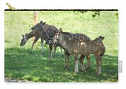Kudu Antelope In A Straight Line Carry-all Pouch