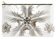 Kunstformen Der Natur Carry-all Pouch by Ernst Haeckel