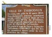 La-036 Ville De Thibodaux Carry-all Pouch