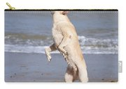 Labrador Dog Jumping For Ball Carry-all Pouch