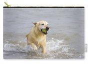 Labrador-mix Retrieving Ball Carry-all Pouch