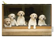 Labrador Puppies At Window Carry-all Pouch