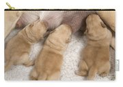 Labrador Puppies Suckling Carry-all Pouch