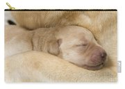 Labrador Puppy On Mother Carry-all Pouch