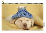 Labrador Puppy With Ice Pack Carry-all Pouch