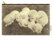Labrador Retriever Puppies Nap Time Vintage Carry-all Pouch by Jennie Marie Schell