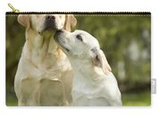 Labradors, Adult And Young Carry-all Pouch