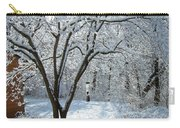 Lacy Snowfall Carry-all Pouch