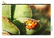 Ladybug And Chick Carry-all Pouch