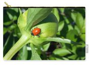 Ladybug Ladybug  Carry-all Pouch