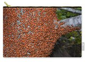 Ladybug Tree Carry-all Pouch