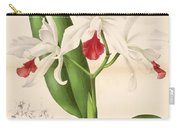 Laelia Elegans Carry-all Pouch by Philip Ralley