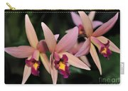 Laelia Santa Barbara Sunset Carry-all Pouch