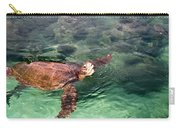 Lager Head Turtle 002 Carry-all Pouch