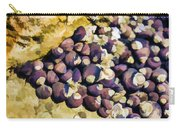 Laguna Beach Tide Pool Pattern 2 Carry-all Pouch