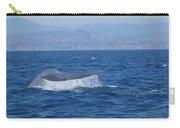 Laguna Whale Carry-all Pouch
