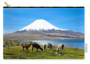 Lake Chungara Chilean Andes Carry-all Pouch by Kurt Van Wagner