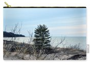 Lake Huron Landscape Carry-all Pouch