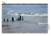 Lake Michigan Green Carry-all Pouch