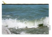 Lake Michigan Shore Carry-all Pouch