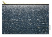 Lake Michigan Sparkling Water Carry-all Pouch