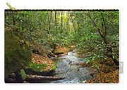 Lamance Creek  Carry-all Pouch