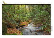 Lamance Creek Vertical Carry-all Pouch