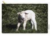 Lamb Carry-all Pouch