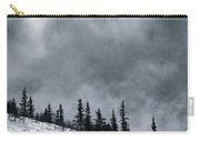 Land Shapes 1 Carry-all Pouch by Priska Wettstein