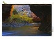 Landscape 319 Carry-all Pouch
