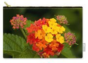 Lantana Carry-all Pouch