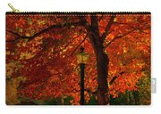 Lantern In Autumn Carry-all Pouch by Susanne Van Hulst
