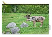 Large Reindeer Molting In Summer Pasture Art Prints Carry-all Pouch