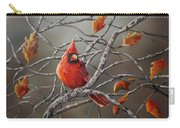 Last Of Fall Cardinal Carry-all Pouch