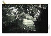 Last Rays II Carry-all Pouch by Jessica Myscofski