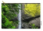 Latourelle Falls Carry-all Pouch