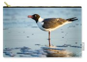 Laughing Gull On The Beach At Fort Clinch State Park Florida  Carry-all Pouch