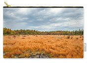 Laurel Summit State Park Bog Carry-all Pouch