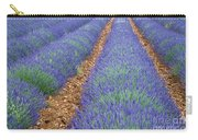 Lavendel 2 Carry-all Pouch