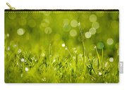 Lawn Twinklers Carry-all Pouch