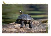 Lazy Day On A Log 6241 Carry-all Pouch