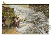 Lazy Mountain Stream Carry-all Pouch