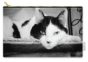 Le Cat Carry-all Pouch by Andee Design