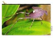Leaf Katydid Carry-all Pouch