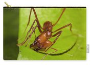 Leafcutter Ant Cutting Leaf Costa Rica Carry-all Pouch