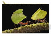 Leafcutter Ants Carrying Leaves Costa Carry-all Pouch