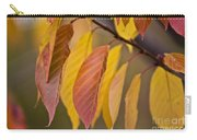 Leaves In Fall Carry-all Pouch