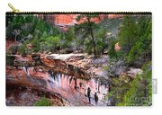 Ledge At Emerald Pools In Zion National Park Carry-all Pouch
