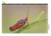 Leichhardts Grasshopper On Pityrodia Carry-all Pouch