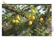 Lemon Picking Carry-all Pouch